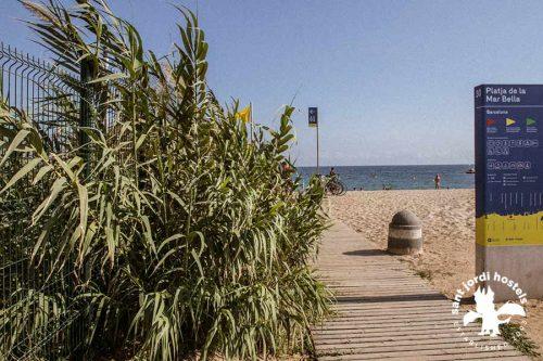 barcelona-nude-beaches-010