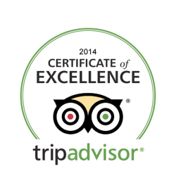 certificate-or-excellence_2014
